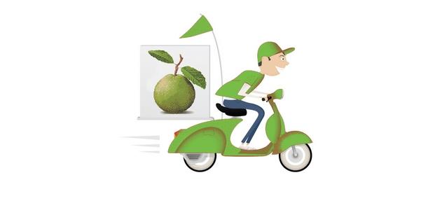 guava-club-delivery-icon